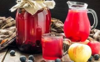 Как сделать вино из компота по простому рецепту