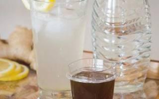 Как приготовить имбирное пиво в домашних условиях
