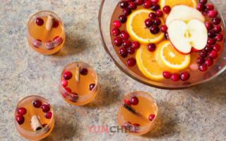 Рецепты приготовления яблочного пунша – Всё о спиртных напитках