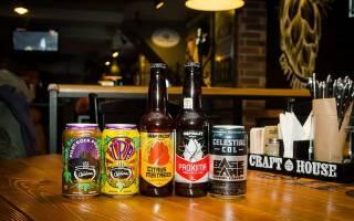 Обзор видов и марок американского пива