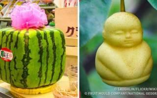 Коктейль The Double Японский урожай