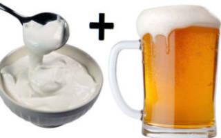Рецепт приготовления пива со сметаной