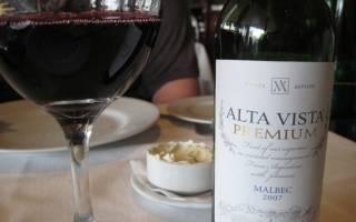 Обзор вина Мальбек