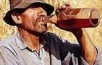 Польская водка и ее особенности
