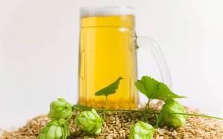 Рецепт приготовления пива в домашних условиях