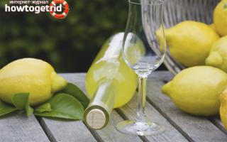 Как и с чем пьют лимончелло