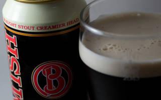 Обзор ирландского пива