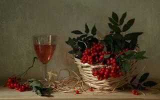 Как приготовить вино из красной рябины в домашних условиях