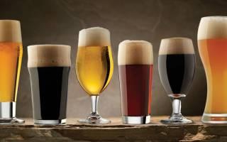 Все о бокалах для пива