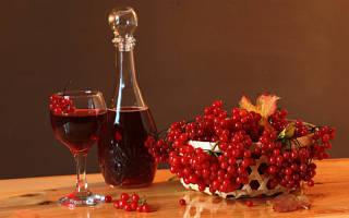 Как приготовить вино из калины в домашних условиях по простому рецепту