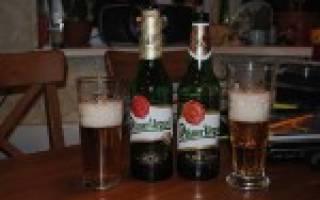 Обзор пива Пилснер Урквел