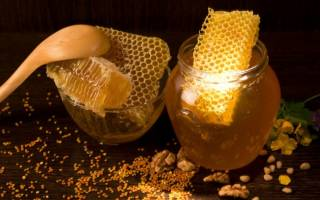 Как приготовить самогон из меда в домашних условиях