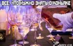 Коньяк: все, что нужно знать о напитке настоящих джентельменов