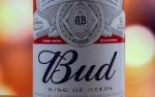 Обзор пива Бад